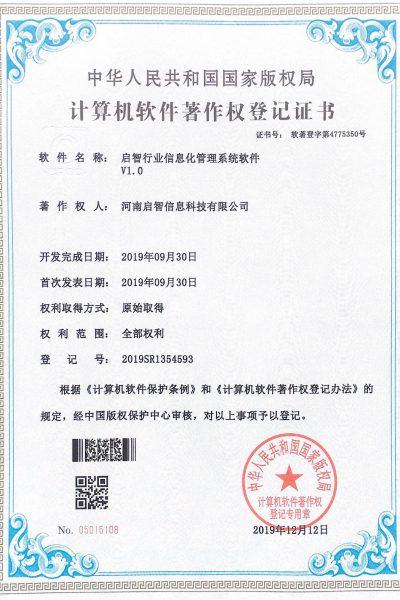 19.9行业信息化系统